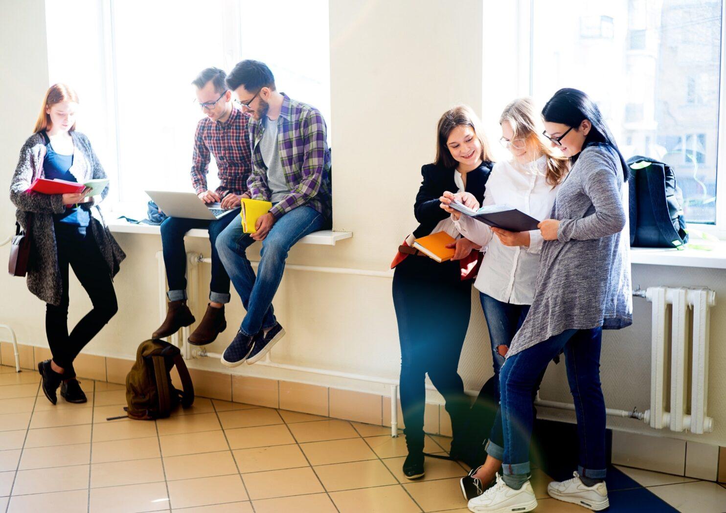 Via Universitària: accés, condicions d'aprenentatge, expectatives i retorns dels estudis universitaris
